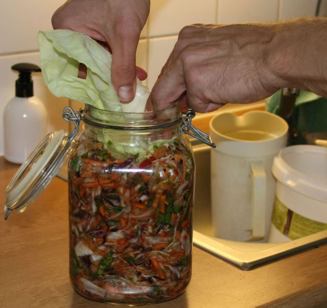 Putting cabbage leaves on top in jars